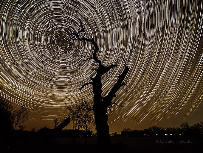 Csillagok - Fotó:Szakolcai Krisztina